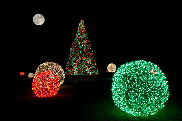 Christmas Tree at Night with Full Moon (2)